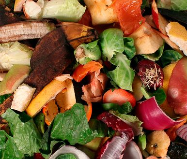 Food waste Disposal & Anaerobic digestion