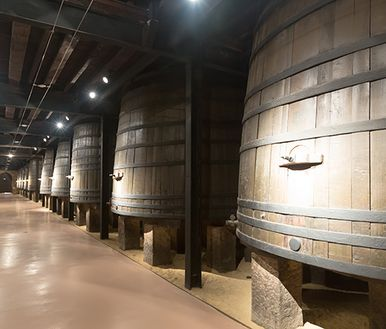 Yeast in wineries